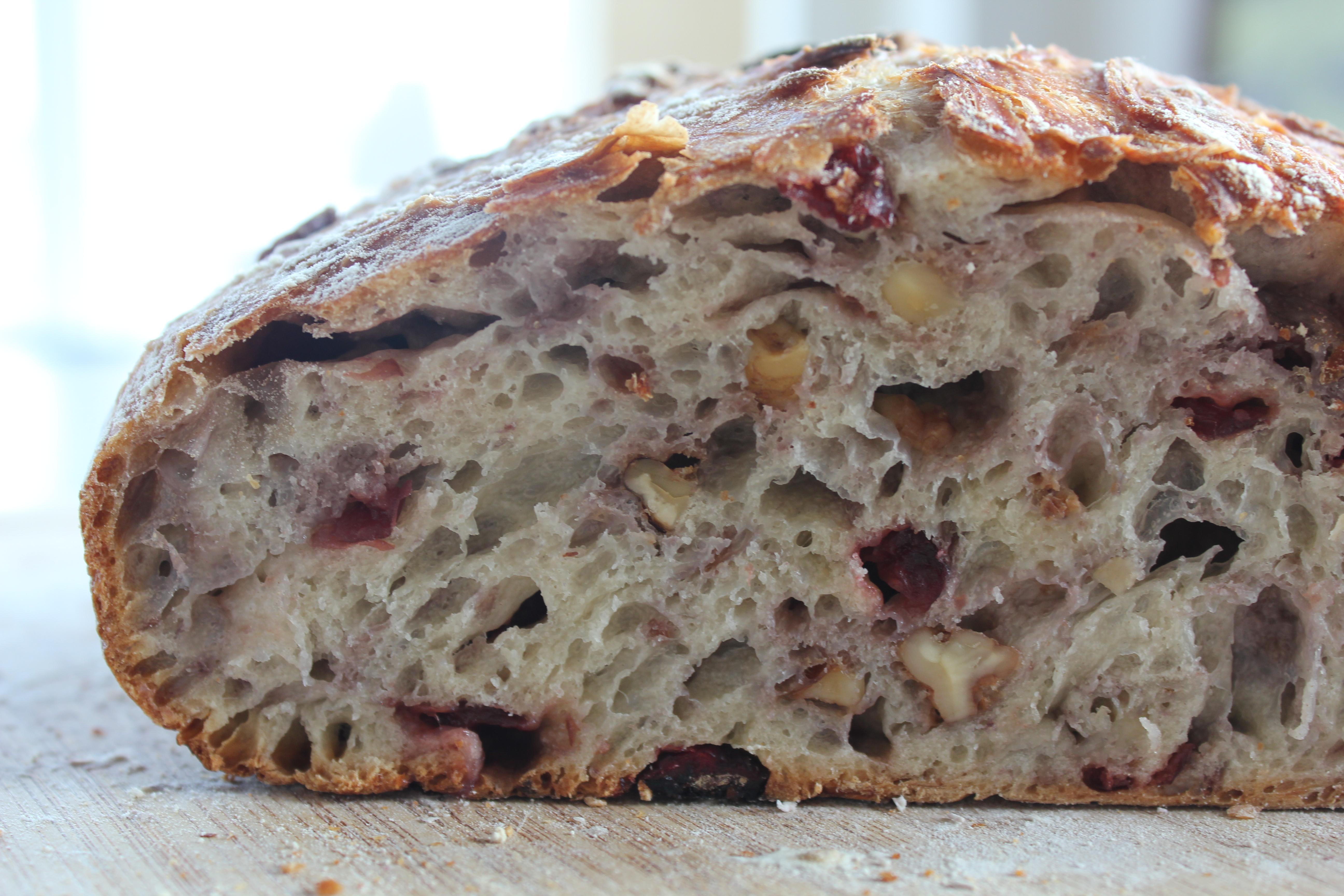 Cranberry Walnut Bread Channeling Contessa